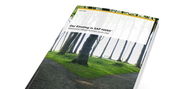 Comp.net SAP HANA Einstieg nfoheft vnew